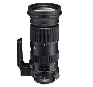 シグマ 60-600mm F4.5-6.3 DG OS HSM (ニコンFマウント) 【Sports】