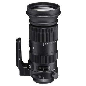 シグマ 60-600mm F4.5-6.3 DG OS HSM (キャノンEFマウント) 【Sports】